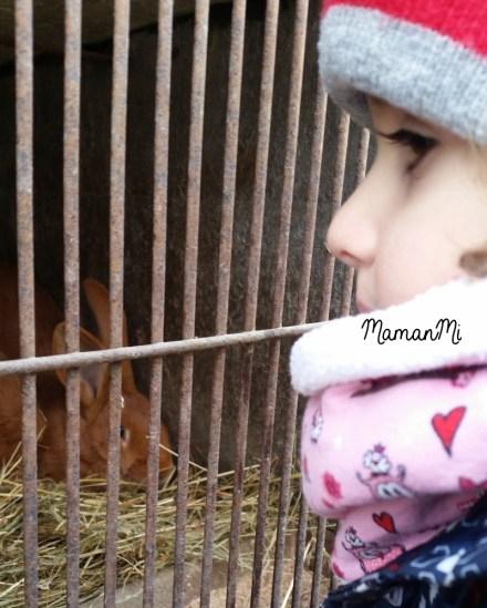 semaine-mamanmi-blog-fevrier2018-maman-viedemaman-quotidien 19