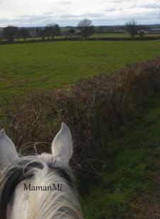 semaine-mamanmi-blog de maman-vie de maman-mars2018 3