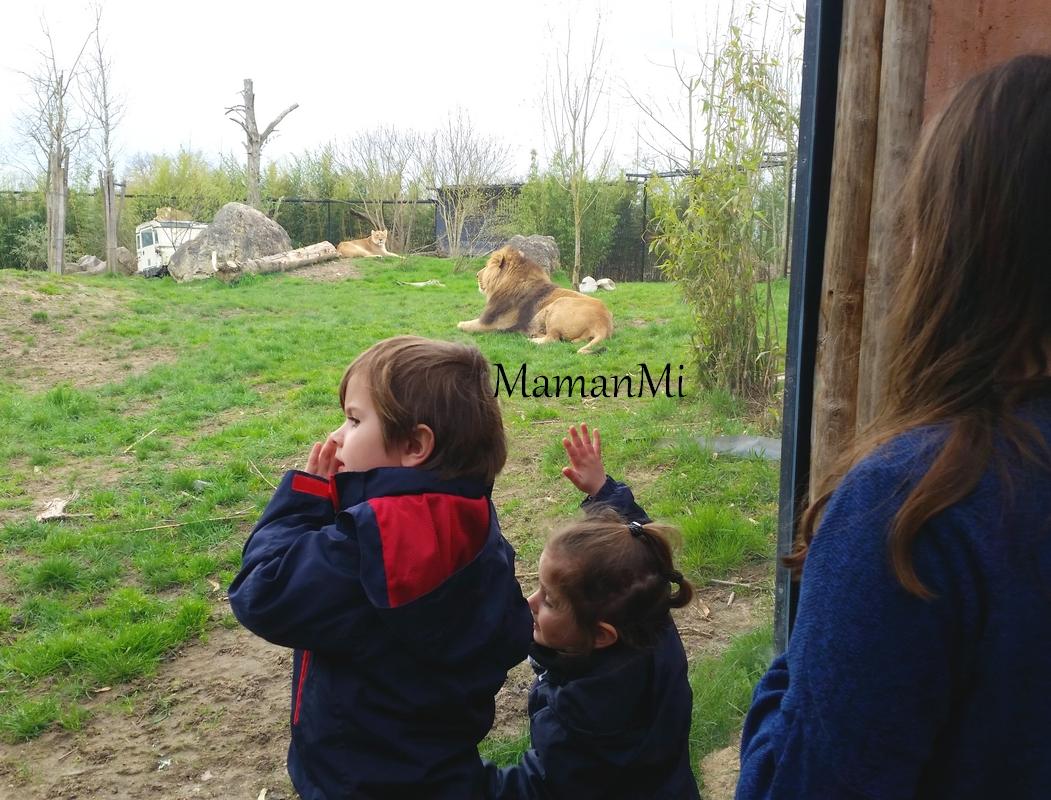 maman-mum-blog-kid-avril 2018 14