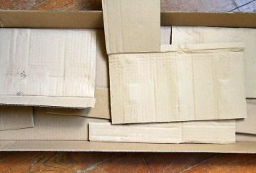 Cactus en carton2