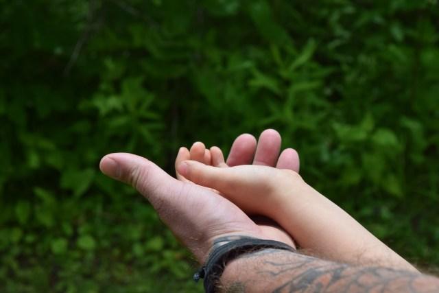 activites quebec marais provancher blog mamans zen maman a la maison profession papa mère au foyer