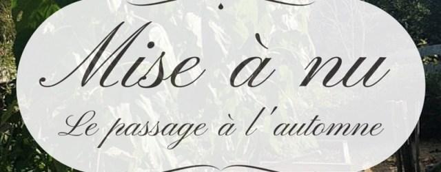 Mise à nu: Comment mieux vivre avec le passage à l'automne, sur le blog Mamans Zen, Profession: Mamans à la maison, image et article