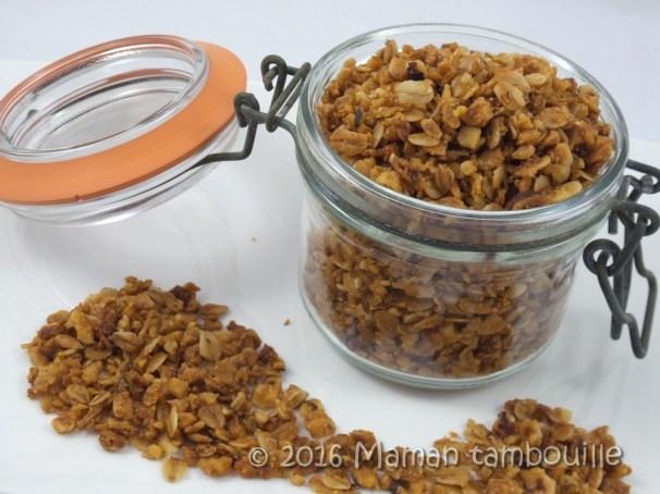 granola muesli11