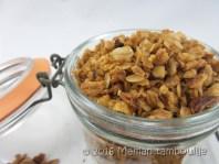 granola muesli14