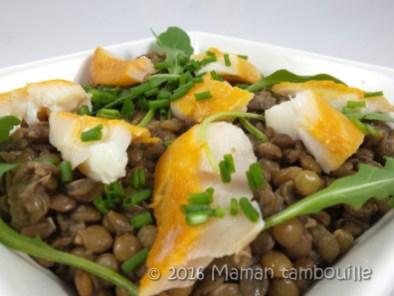 salade lentilles haddock14