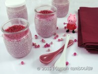 chia-pudding-rose05