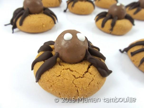 cookies-araignees19