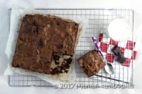 brownie teff14