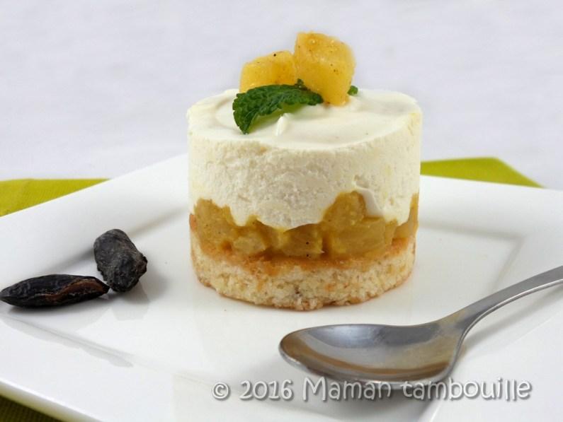 entremet-ananas-tonka23