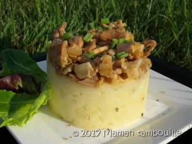 parmentier de poulet thai10