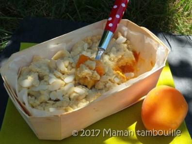 crumble abricot07