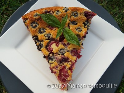 clafouti mures framboises18