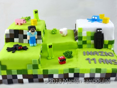 gateau minecraft55