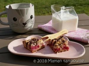 crumb cake framboises16