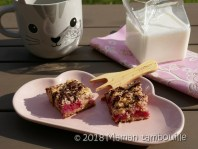 crumb cake framboises22