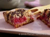 crumb cake framboises25