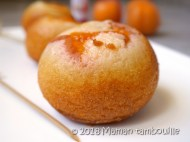 boules a l'abricot27