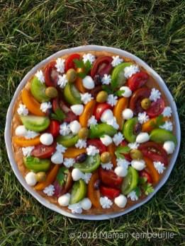 fantastik tomates anciennes37