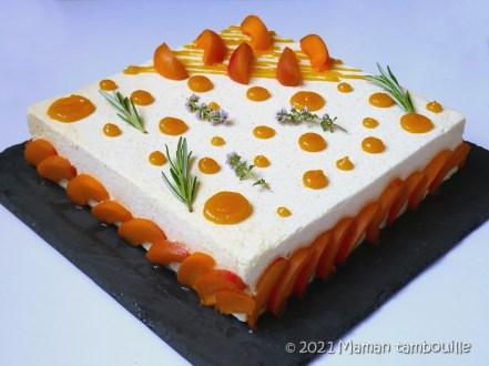 entremets abricot32
