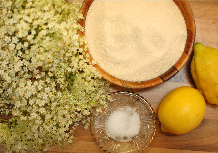 Elderflower Cordial Ingredients from Mamanushka.com