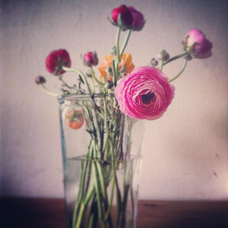 flower-gift-via-mamanushkablog
