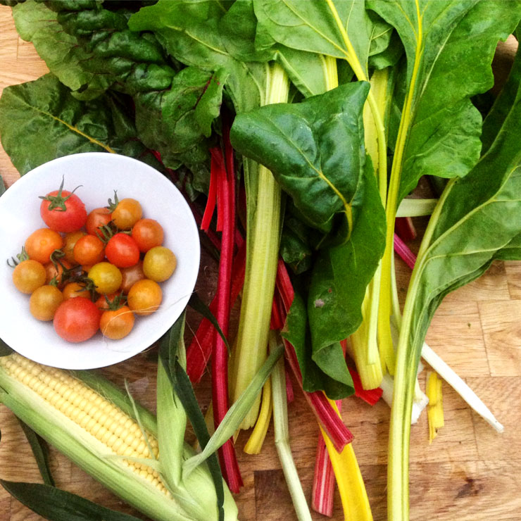 MAMANUSHKA.com    How To Plant An Edible Garden    Easy Guide to Growing Your Own Fruit & Vegetables    Chard    Tomatoes    Harvest