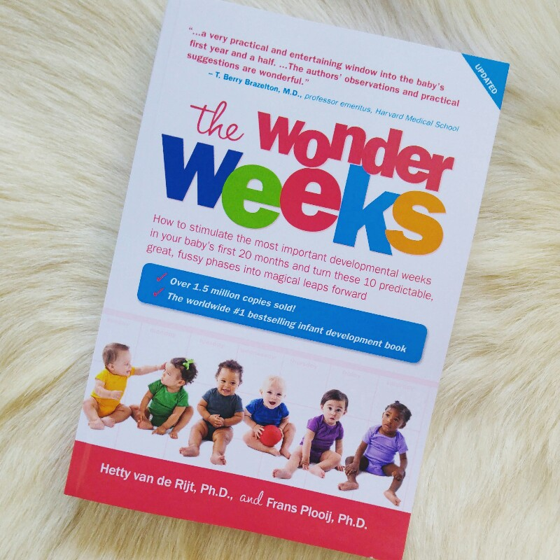 MAMANUSHKA.com || Best Baby Gifts || Best Gifts For New Parents || The Wonder Weeks
