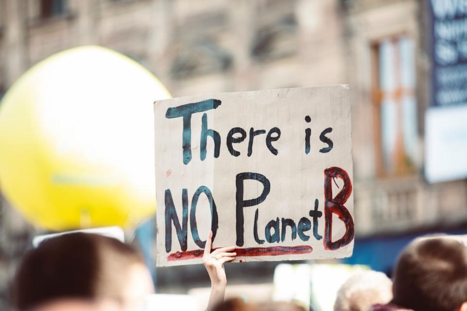 manifestation écologie no plant b manifestant zéro déchet