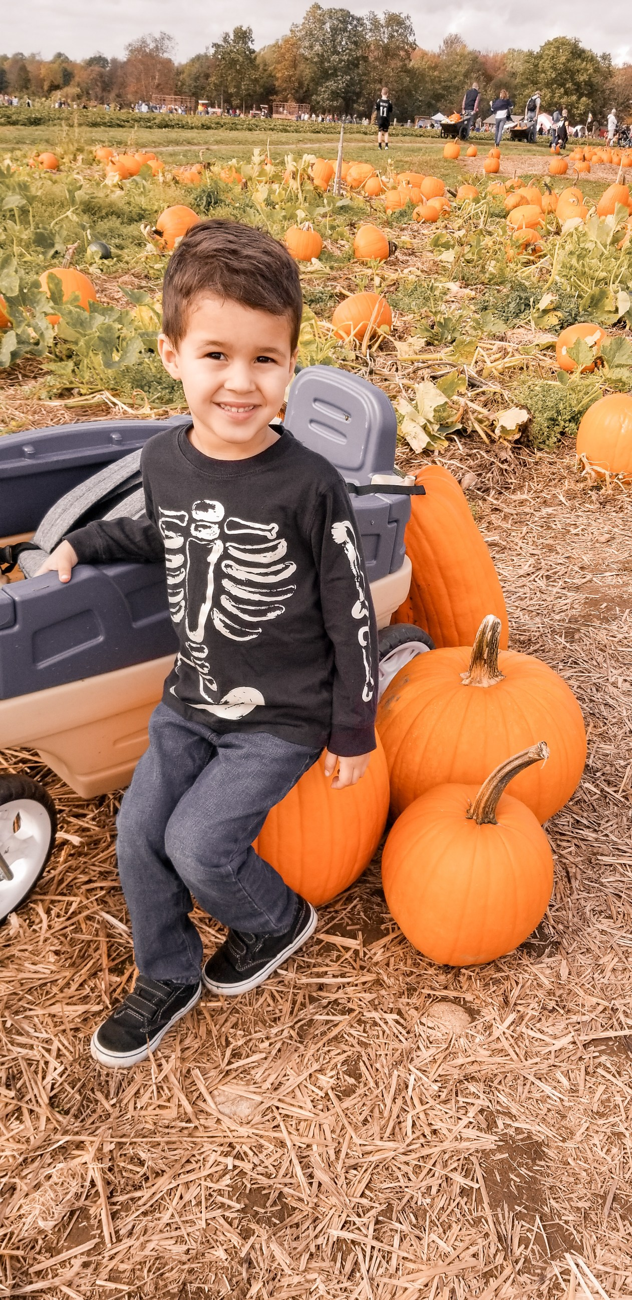 Mama of Both Worlds: Fall Activities for Your Family