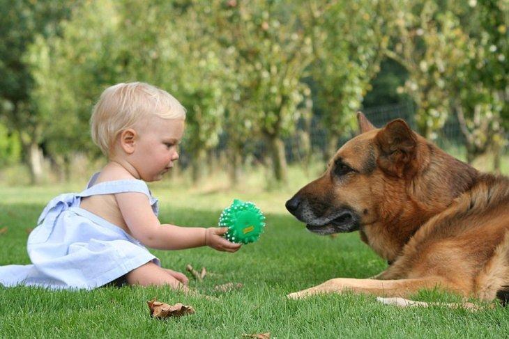 djeca sa psima