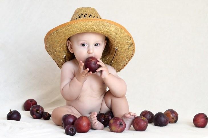 čvrsta hrana za bebe