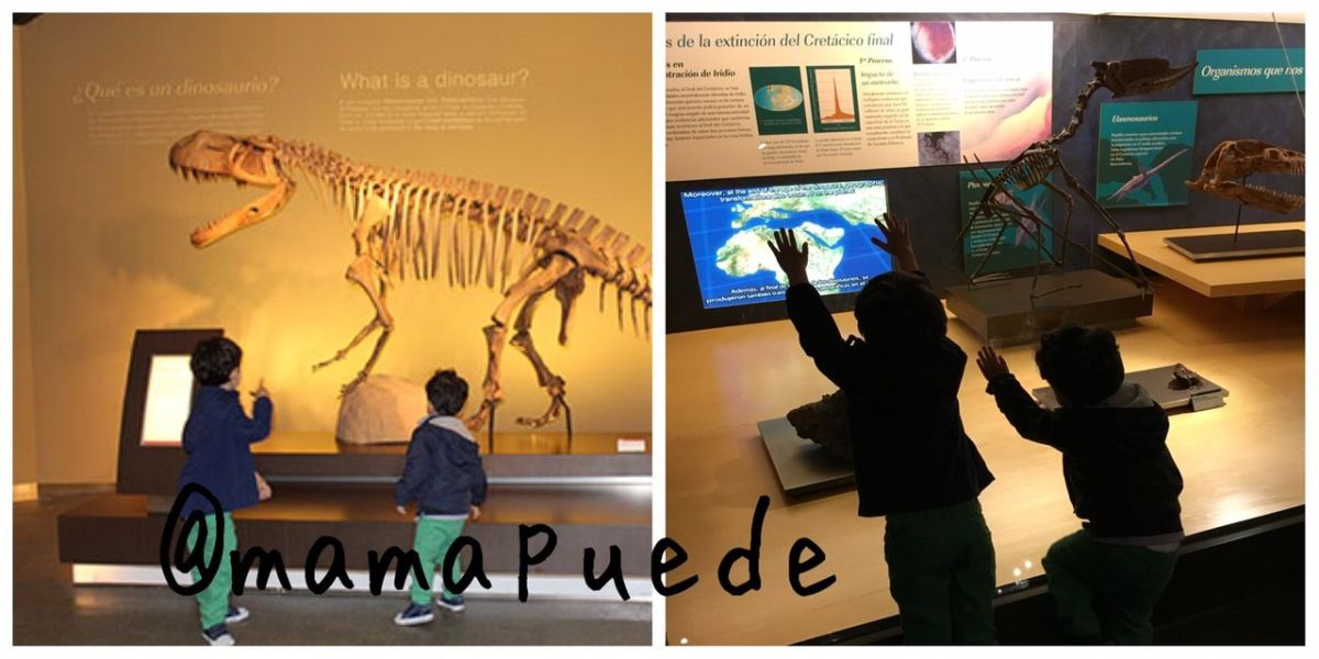 museo de dinosaurios