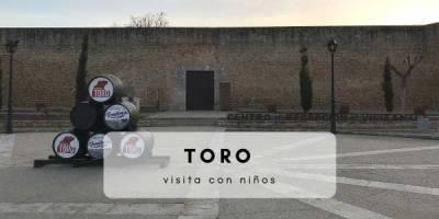 excursión a Toro