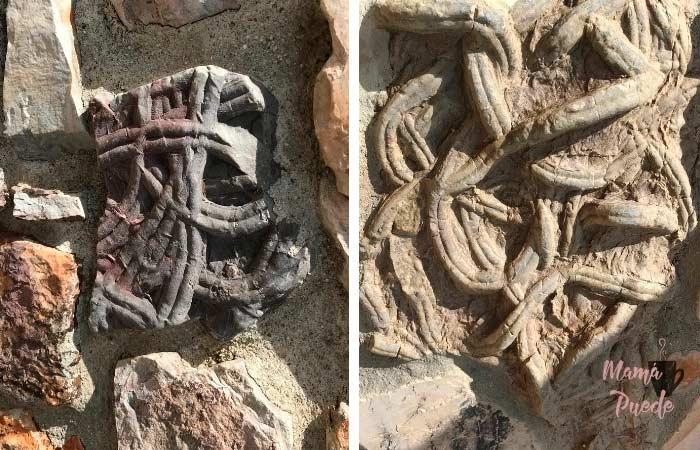 huellas fósiles en Monsagro