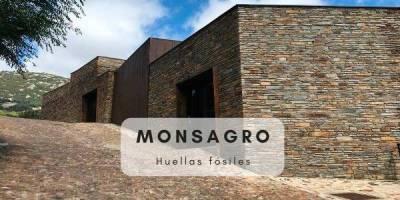 Huellas fósiles en Salamanca