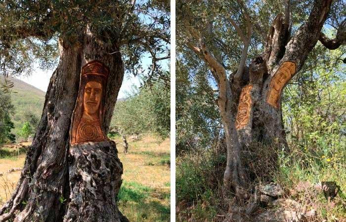 árboles tallados en Las Casas del Conde