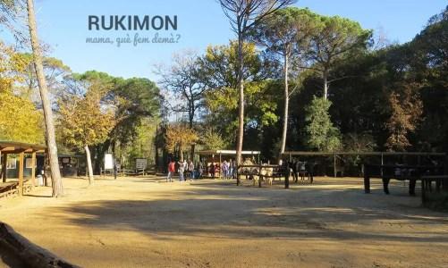 El món dels rucs: Rukimon