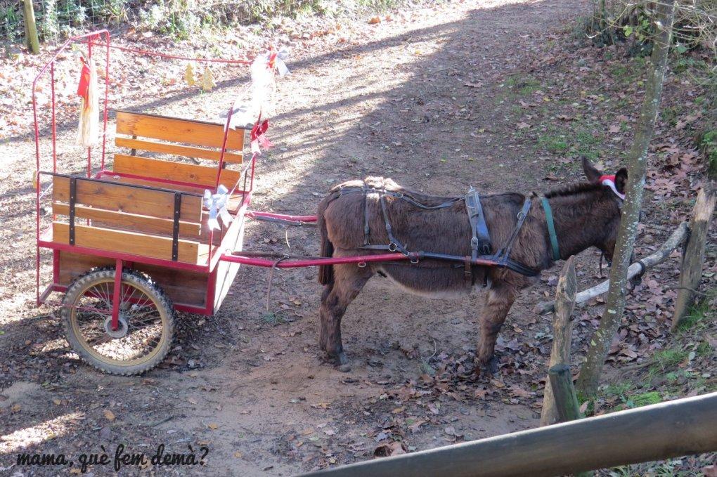 burro arrastrando un carrito