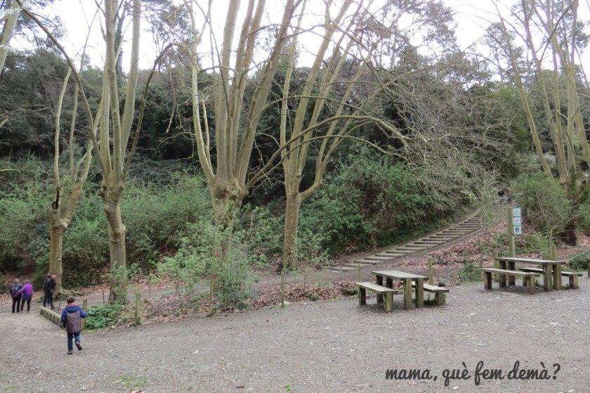 picnic en vallvidrera