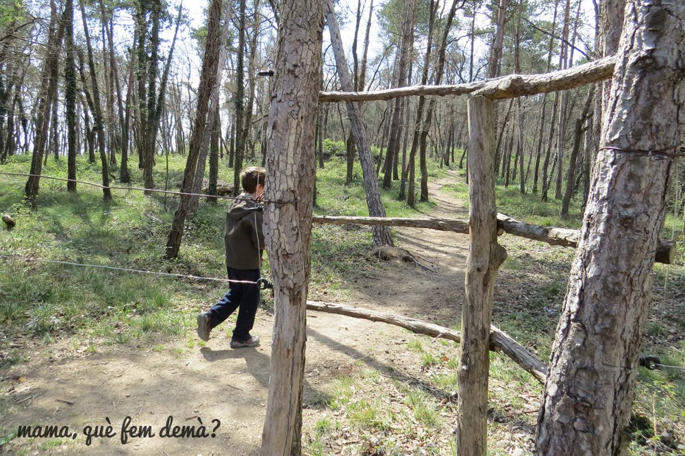 Excursión al El Bosc Encantat y la Creu de Gurb
