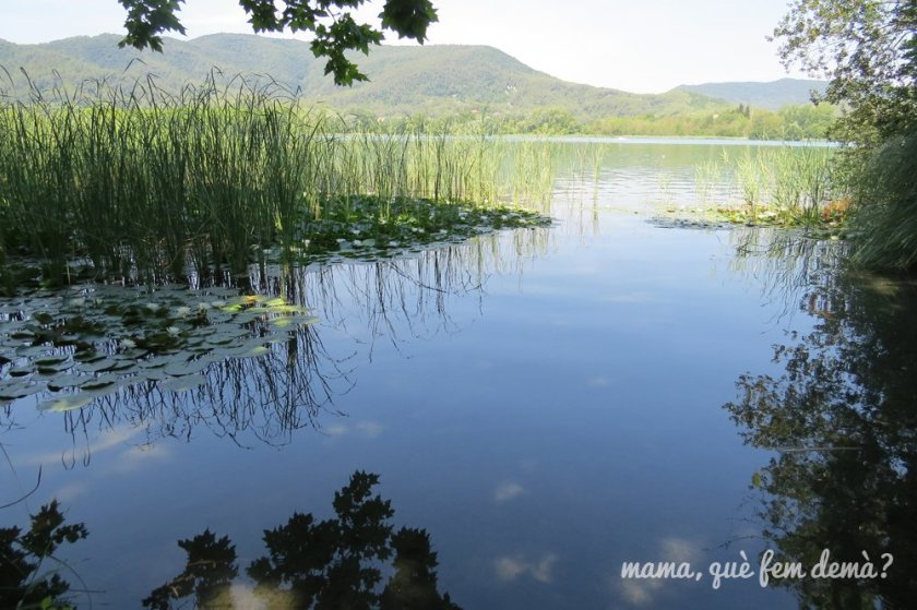 Lago de Banyoles y vegetación
