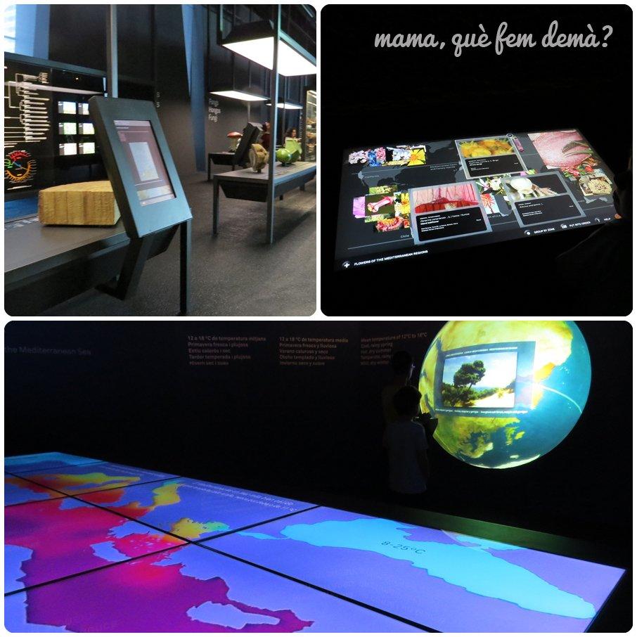 museublau01