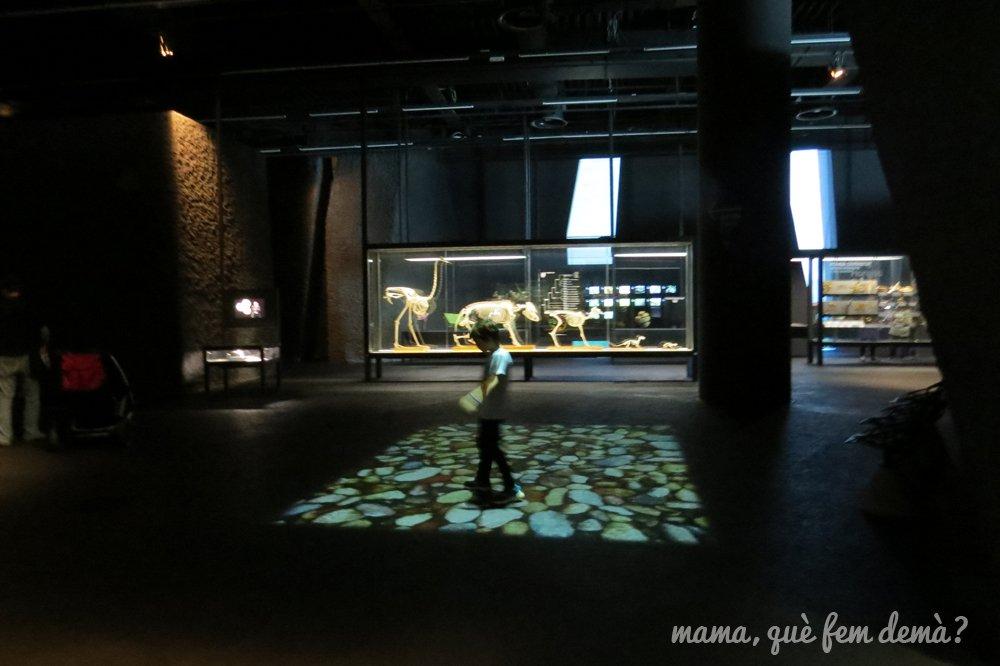 museublau07
