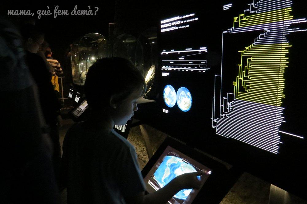 museublau12