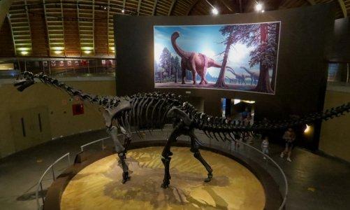 Visita con niños al Museo del Jurásico de Asturias