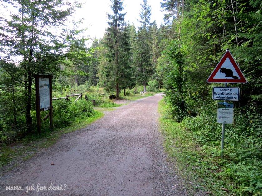 camino y letrero indicando que hay nutrias en el lago Eisweiher