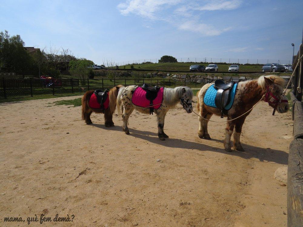 3 ponis en la Granja Can Pidelaserra