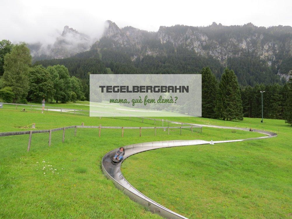 rodelbahn de tegelbergbahn