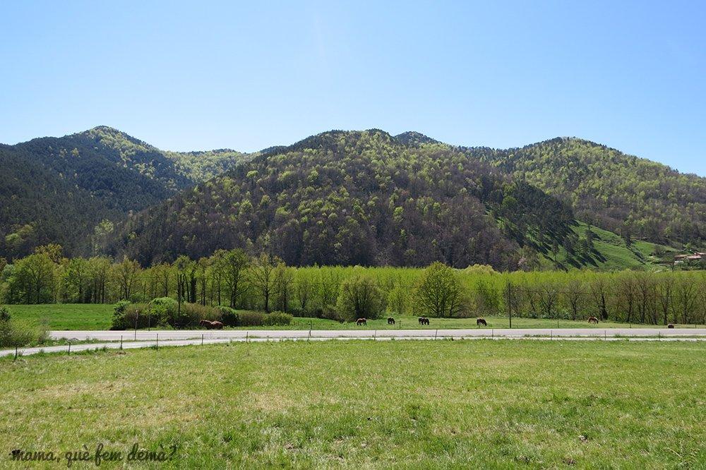 ruta_del_ferro15