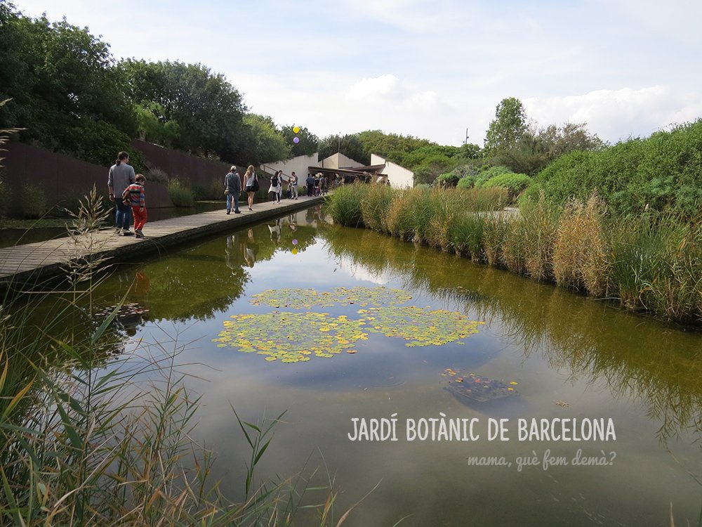 jardi_botanic00